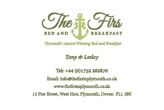 Business Stationery Design Plymouth - The Firs Business Card Front - Web Design and SEO Company