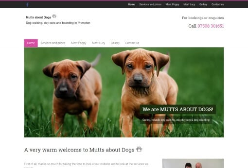 Recent Work - Mutts about Dogs Plympton Website