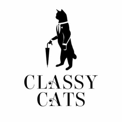 Logo Design - The logo for Classy Cats - Web Design and SEO Company