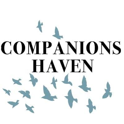 Logo Design Plymouth - Companions Haven - Web Design and SEO Company