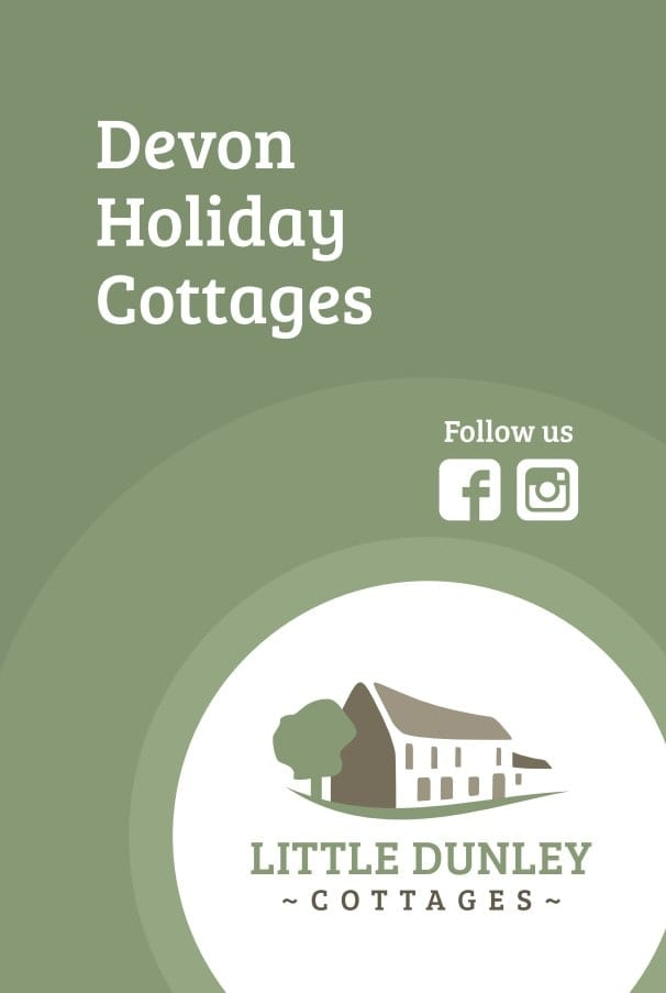 Business Stationery Design Plymouth - Little Dunley Cottages Back - Web Design and SEO Company