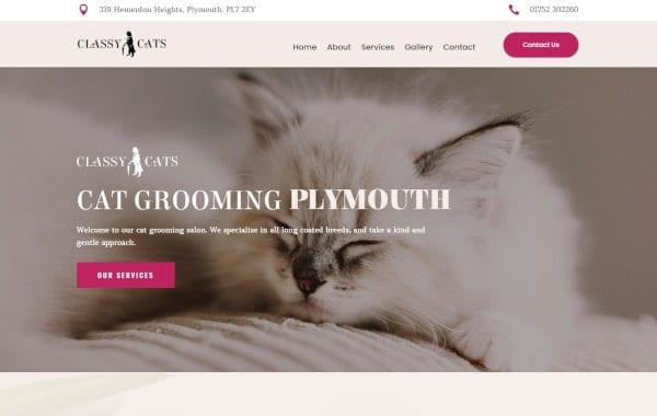 Website Design and Development - An image of the Classy Cats homepage - Web Design and SEO Company